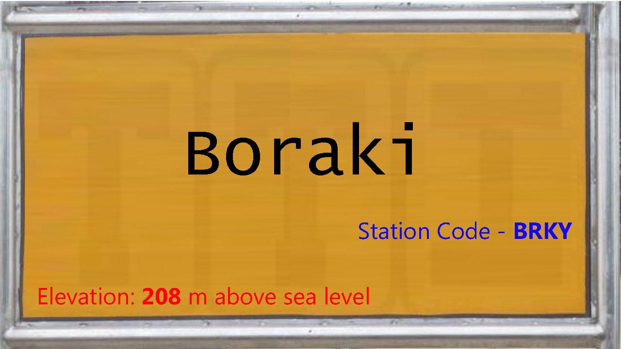 Boraki