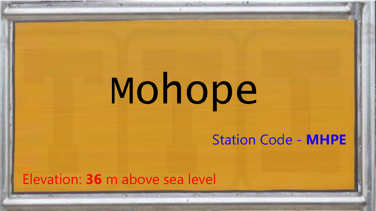 Mohope