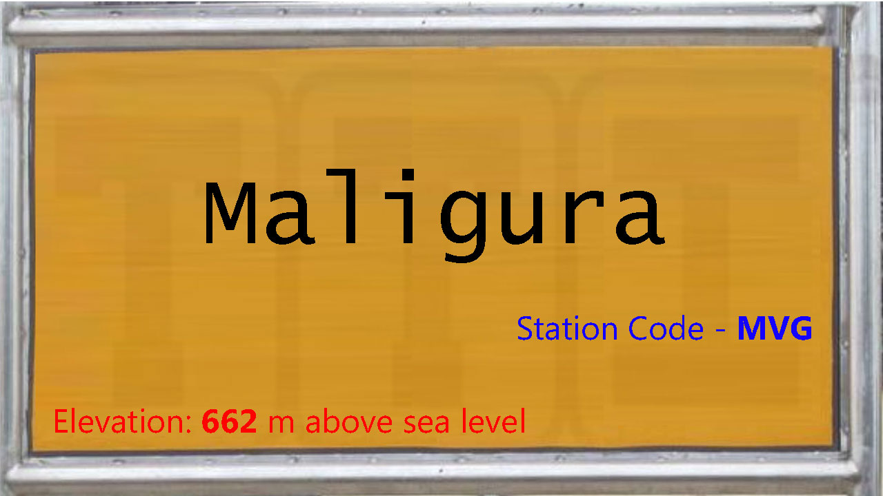 Maligura