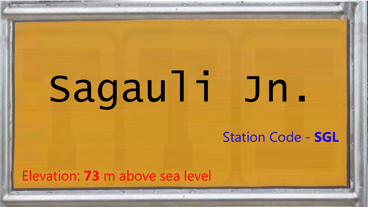 Sagauli Junction
