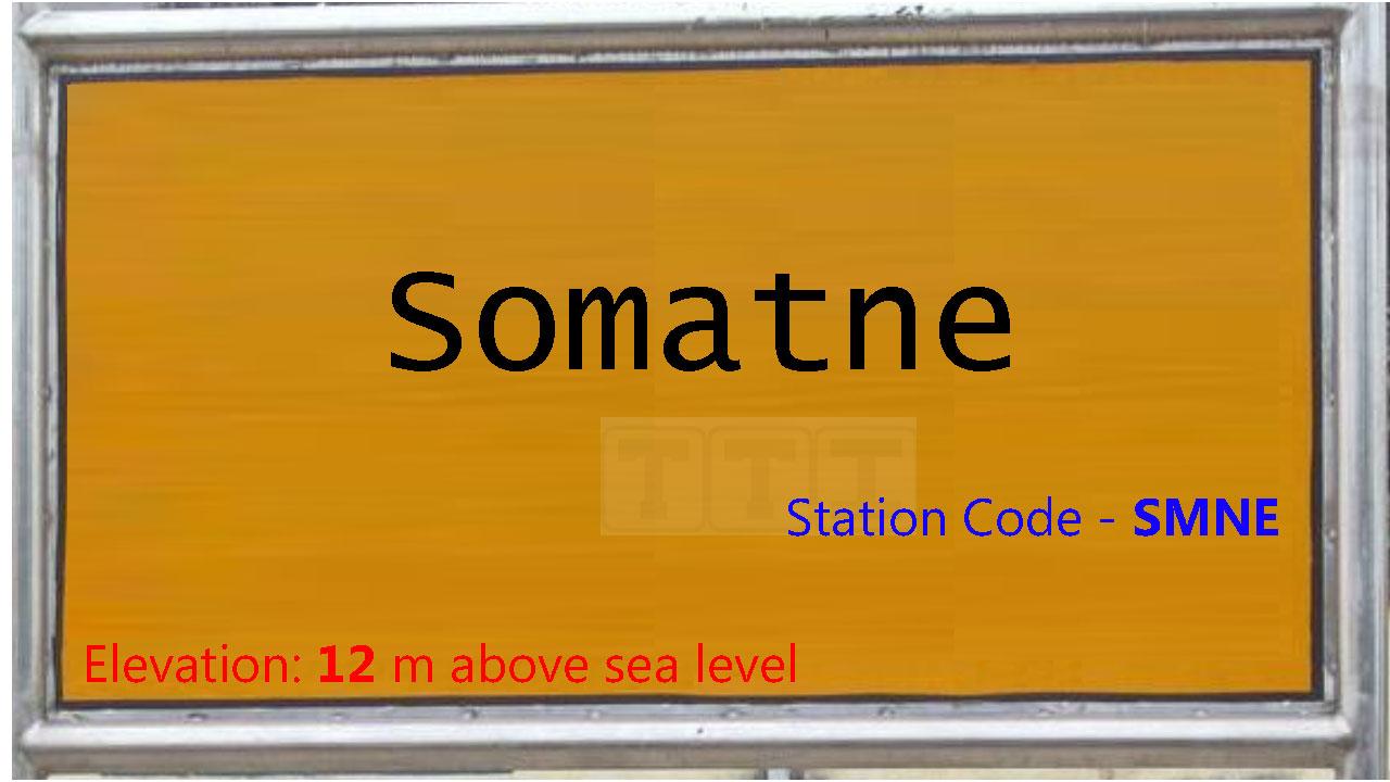 Somatne