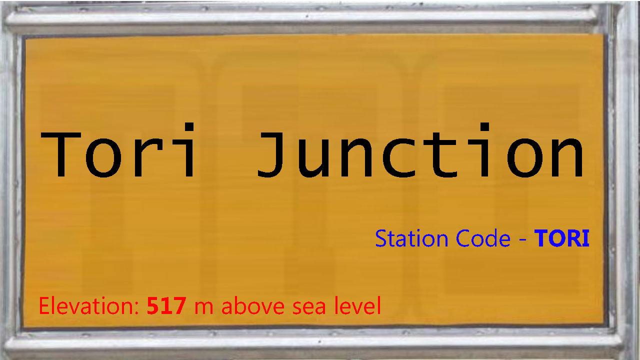 Tori Junction